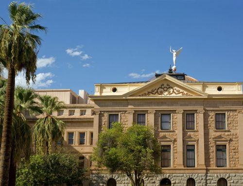Q&A with David Levine: How Does Arizona's 'Audit' Compare To What Audits Are Supposed To Be?